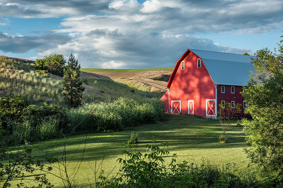 The Palouse Workshop  June 11th-15th 2014                     ** new workshop added **  June 18th-22nd, 2014